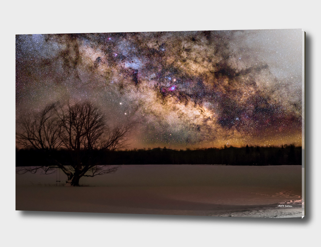Milky way and Lone Tree