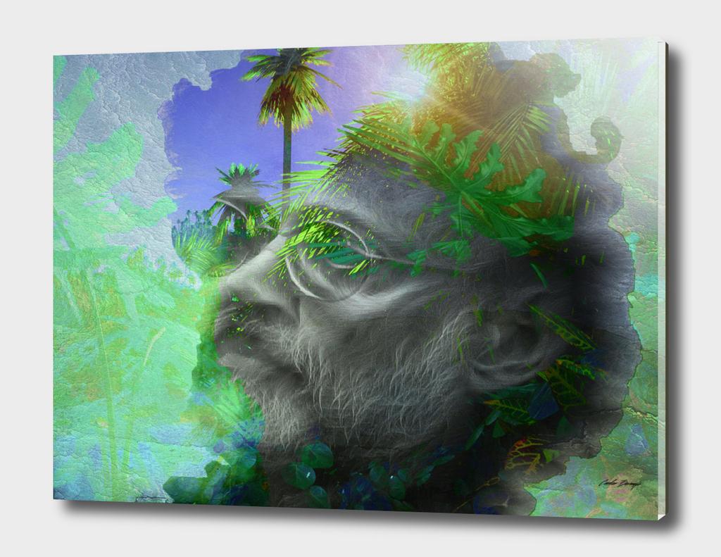 Terrence Mckenna  - psychedlic portrait