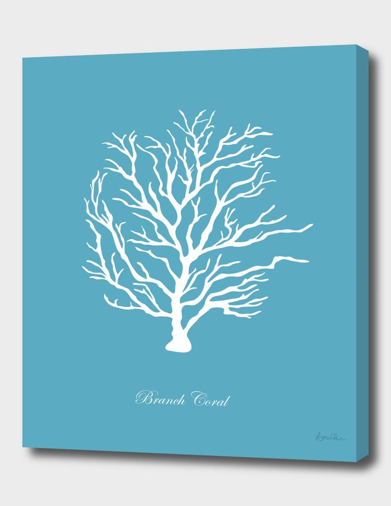 AFE Branch Coral