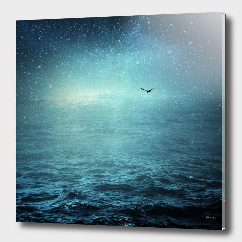 the sea & the universe
