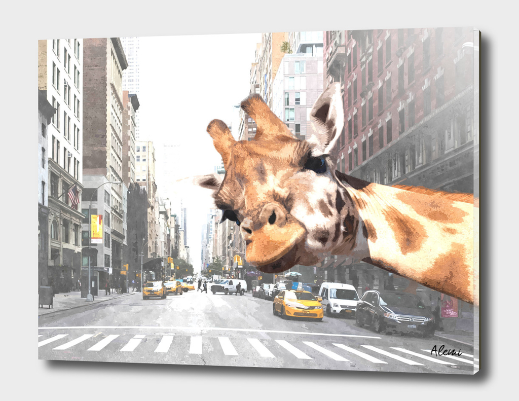 Selfie Giraffe in New York