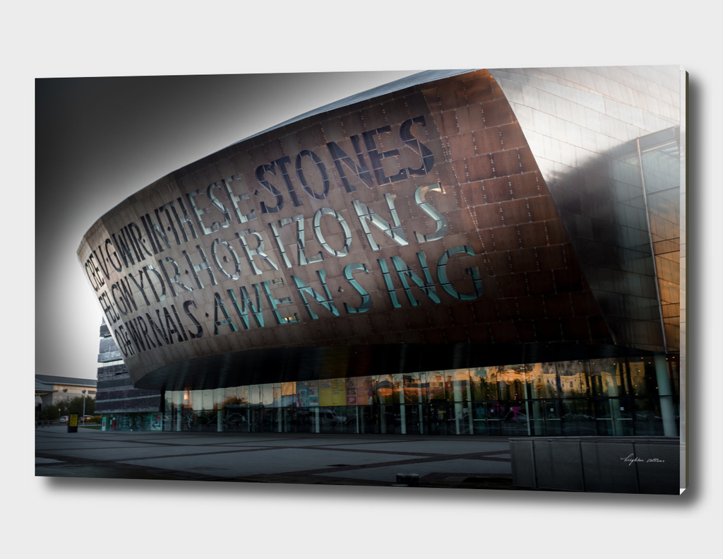 Wales Millennium Centre AKA Cardiff Bay golden armadillo