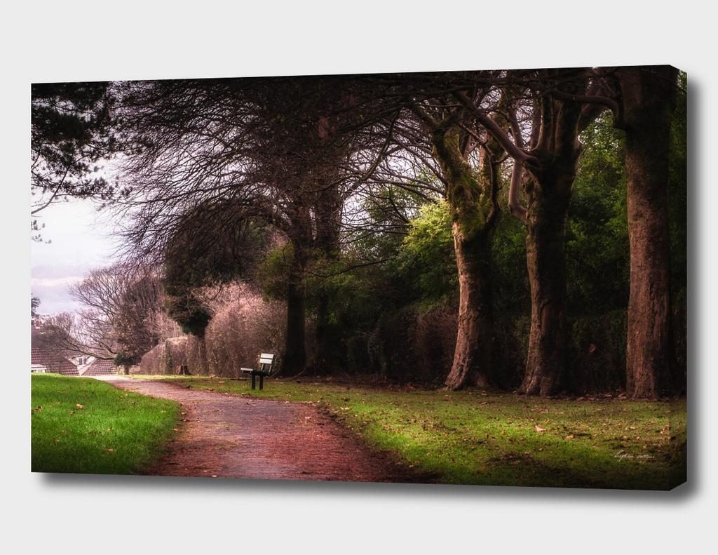 Ravenhill park