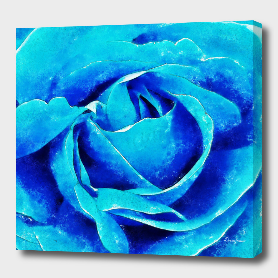 Closeup Blue Rose Fine Art
