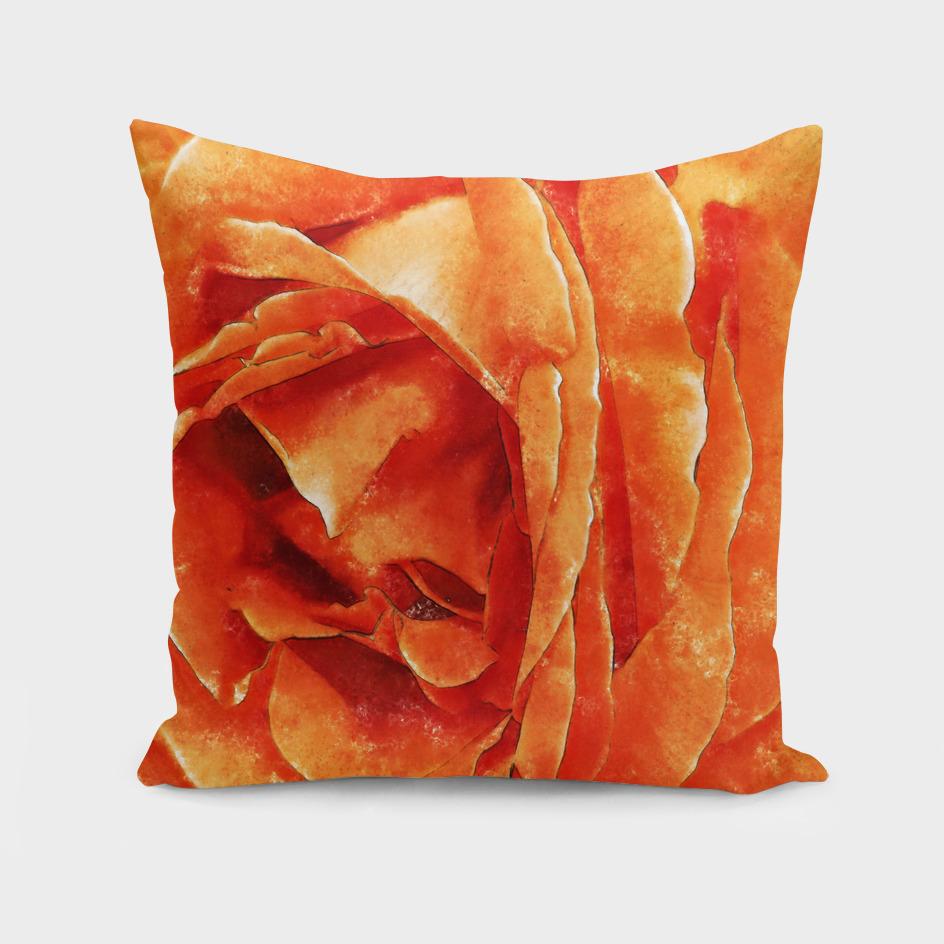Closeup Orange Rose Fine Art