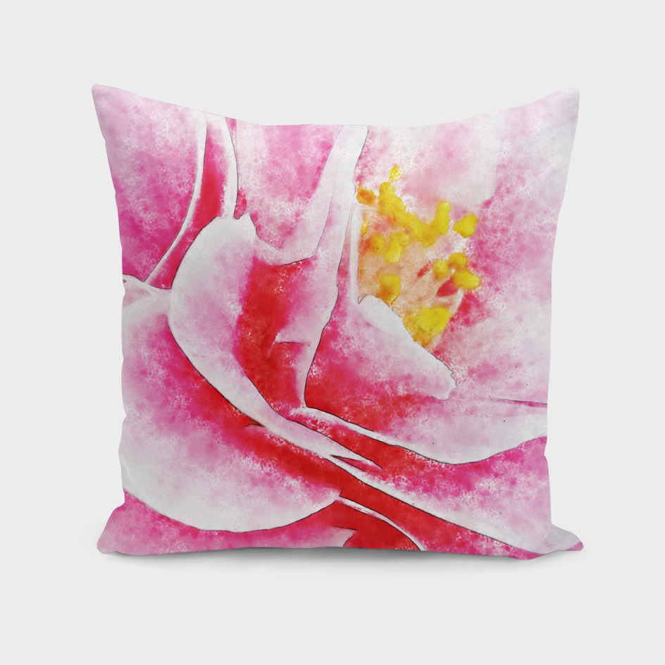 Closeup Pink White Camelia  Fine Art
