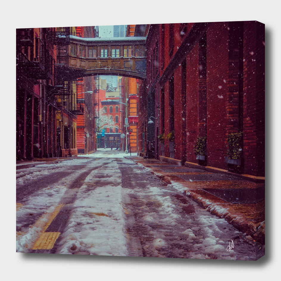 Staple Street Sky Bridge In Snow