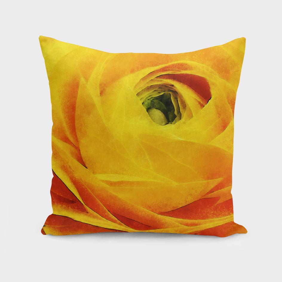 Closeup Yellow Ranunculus Fine Art