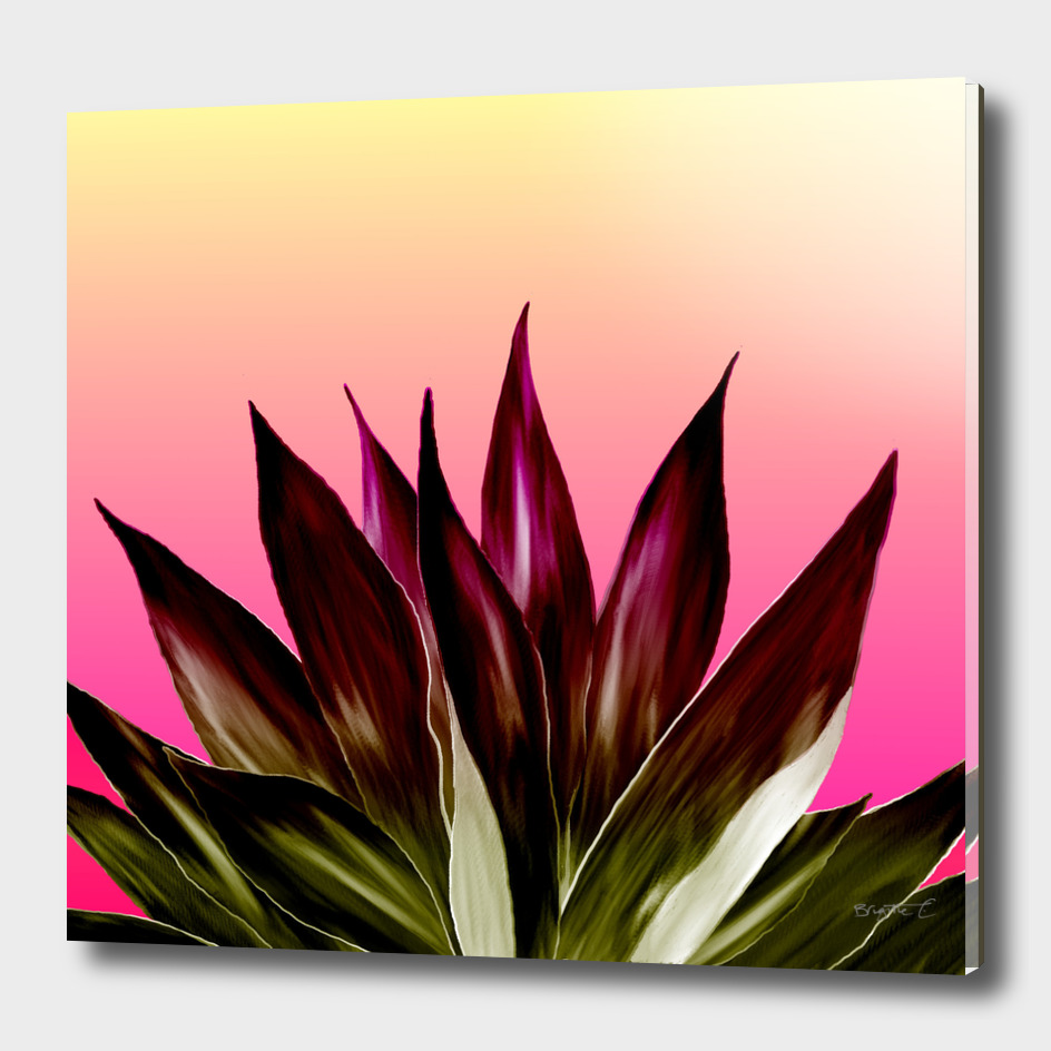 Bold Sunset Agave Fringe Illustration