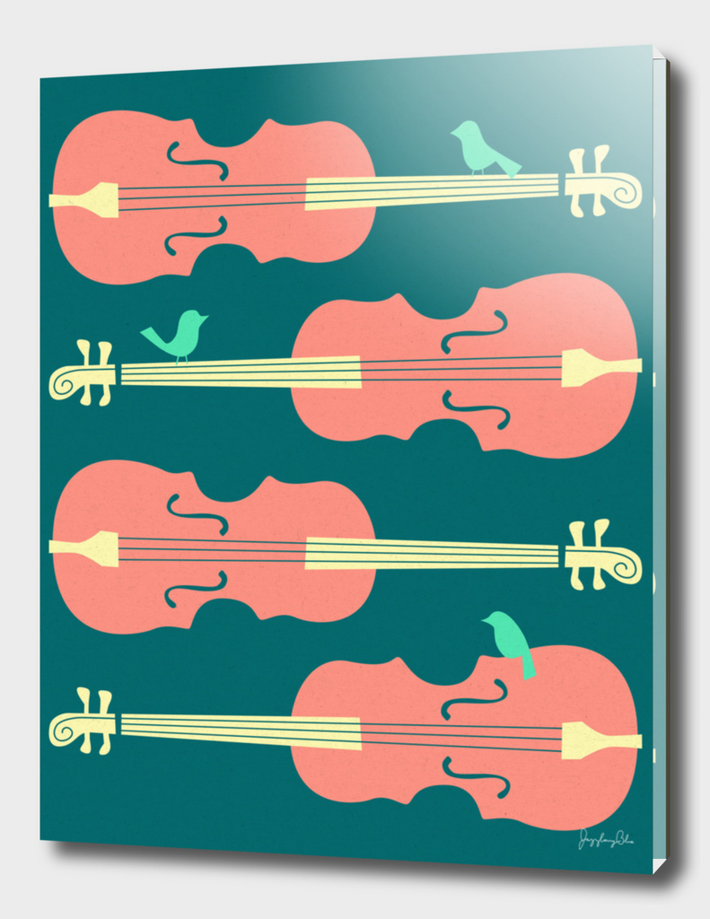 Birds on Cello Strings (2)