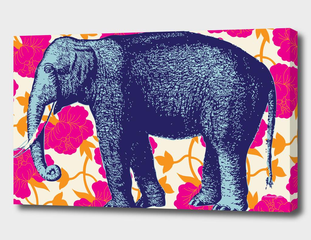 elephant floral fuschia