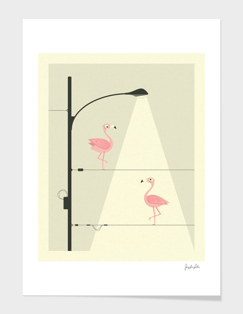 Pink Flamingos on a Wire