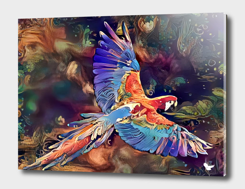 The flight of the macaw