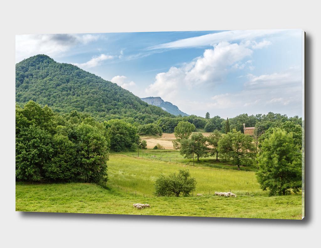 Catalan Pyrenees foothills