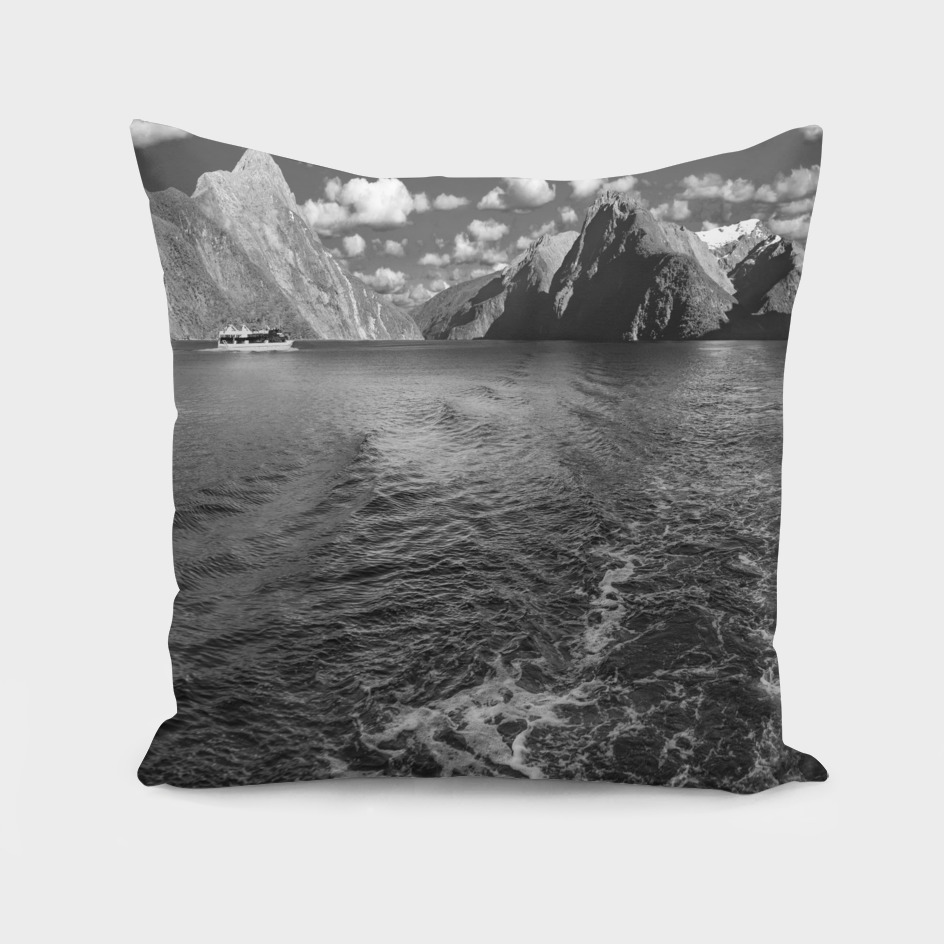 A boat ride at Milford Sound in black and white