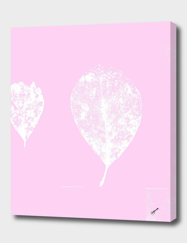 Skeleton leaves pastel pink