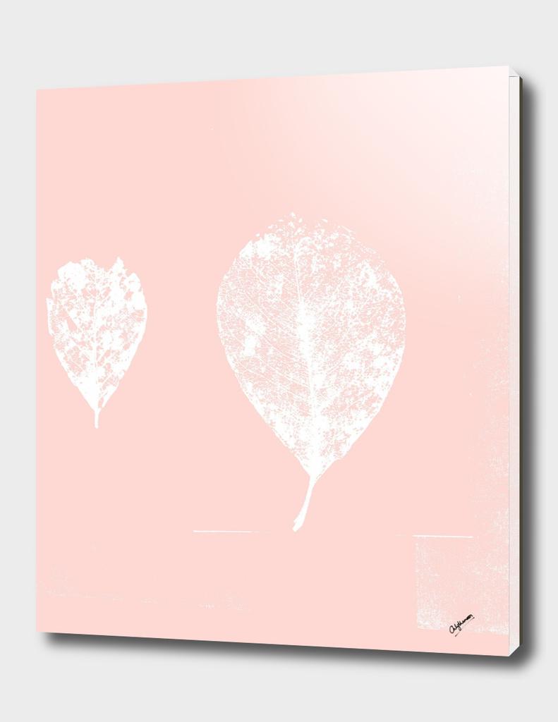 Rose Blush skeleton leaves