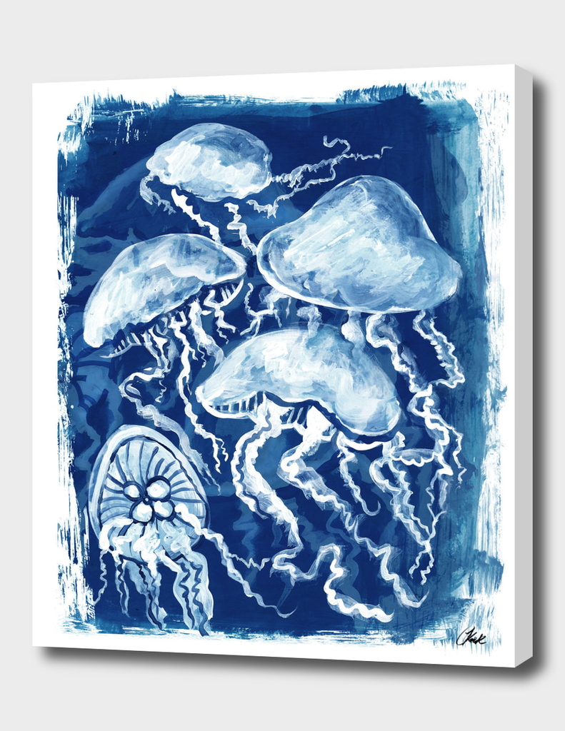 Jellyfish Paint1