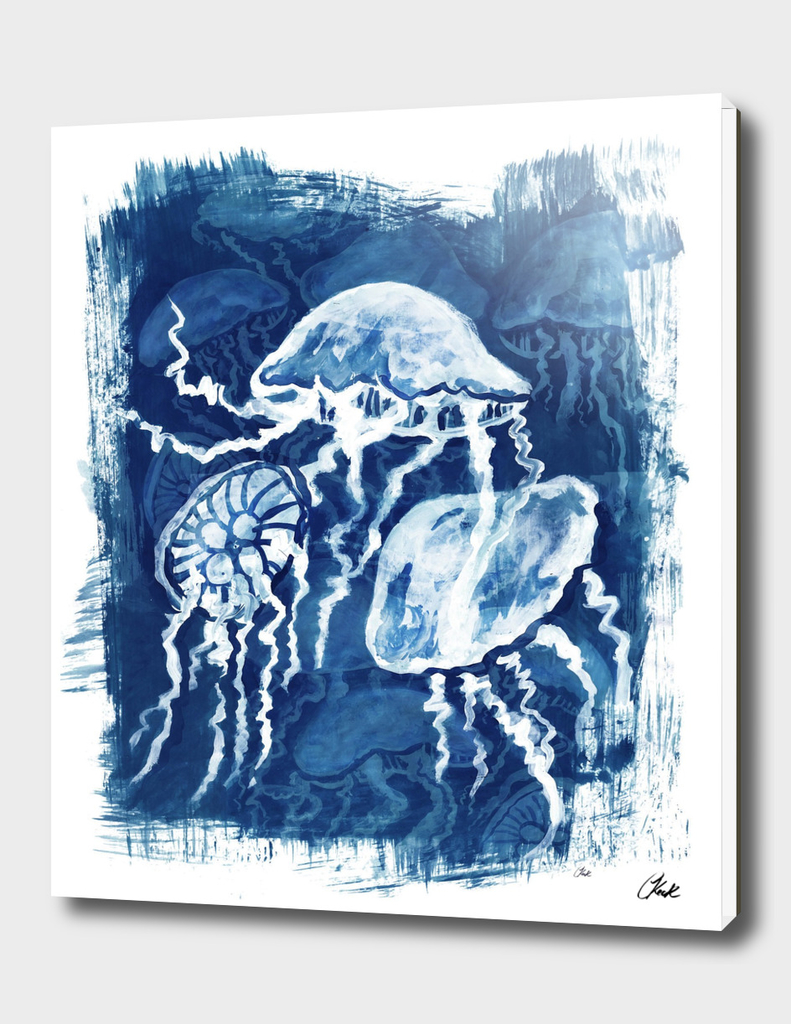 Jellyfish Paint 2