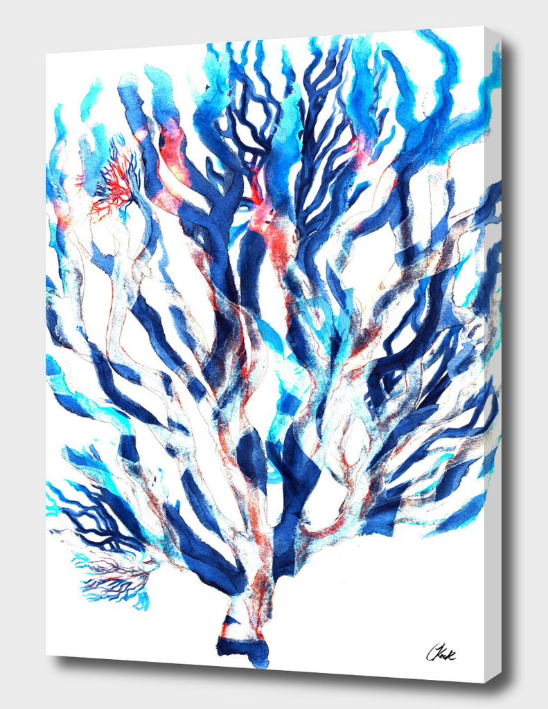 Watercolor Blue Coral