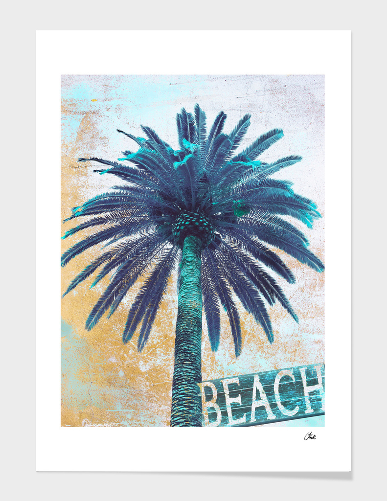 Palm Rustic Blue
