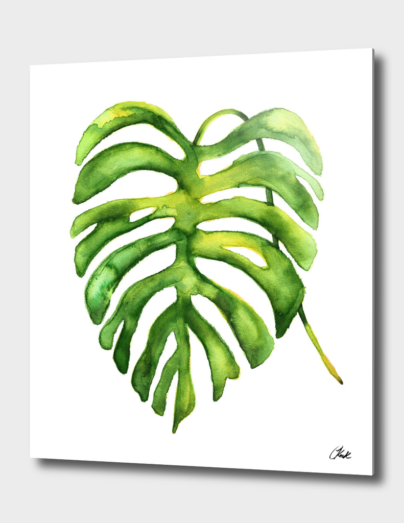 Green Watercolor Palm