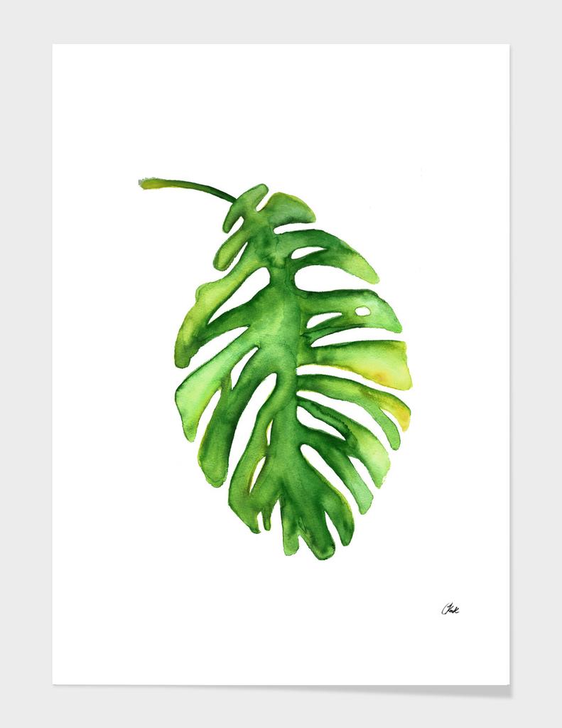 \Watercolor Green Leaf