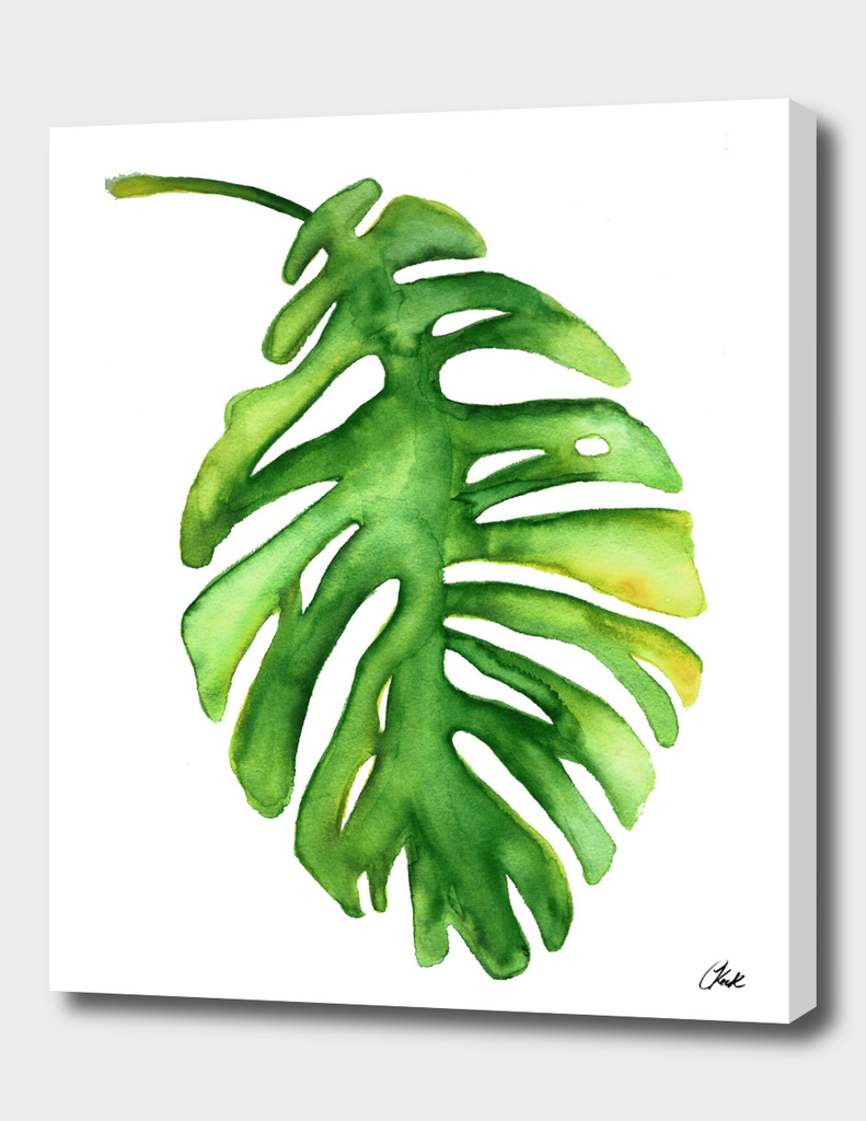 \Watercolor Green Leaf