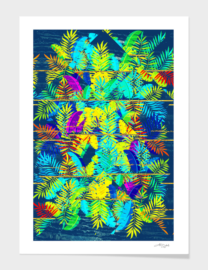 Tropical XV