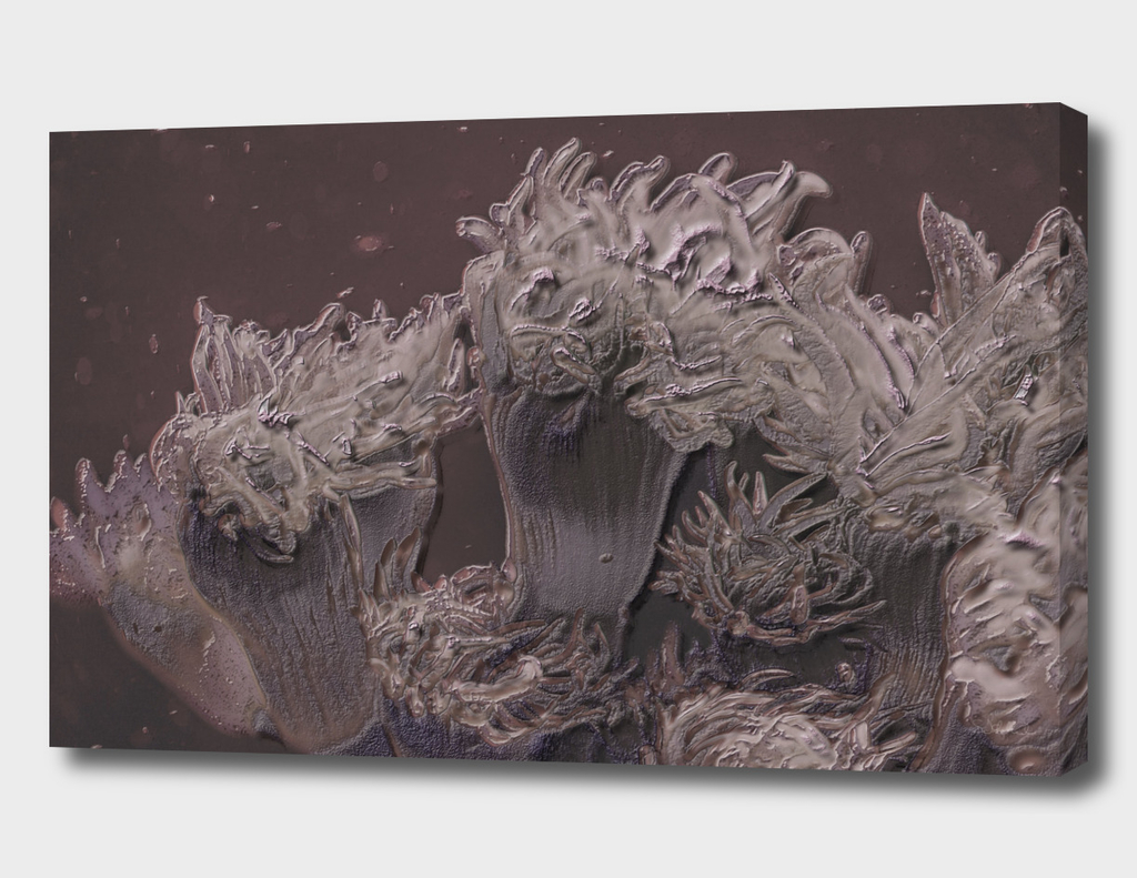 Soft coral in grey