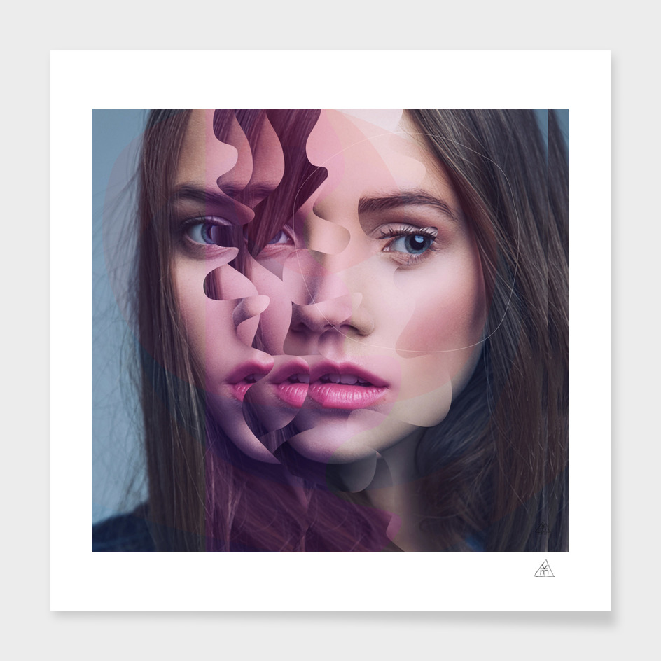 Another Portrait Disaster ·N 1