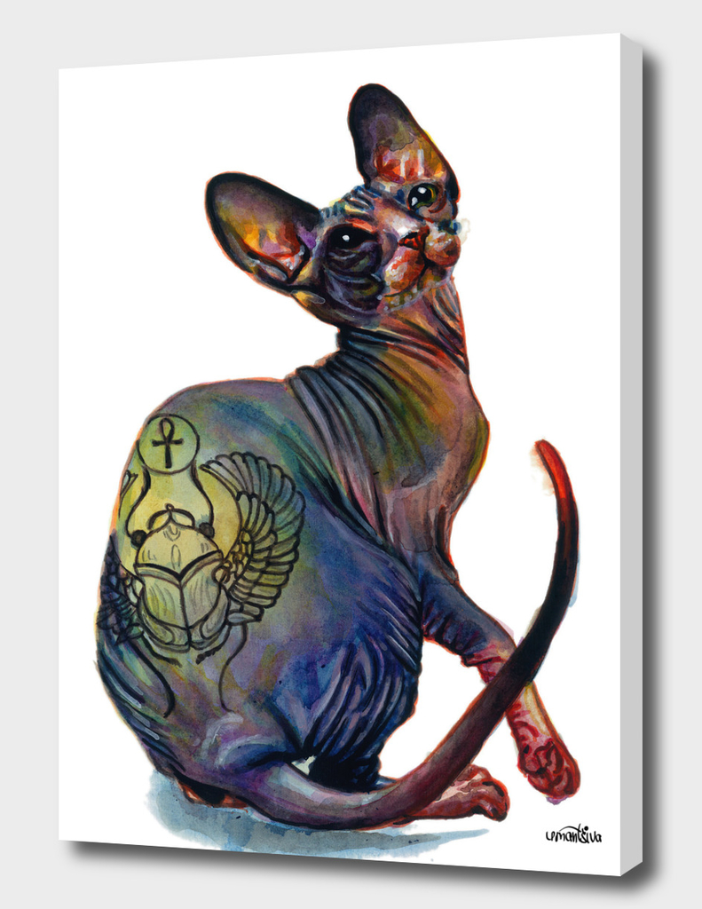 Tattooed Sphynx