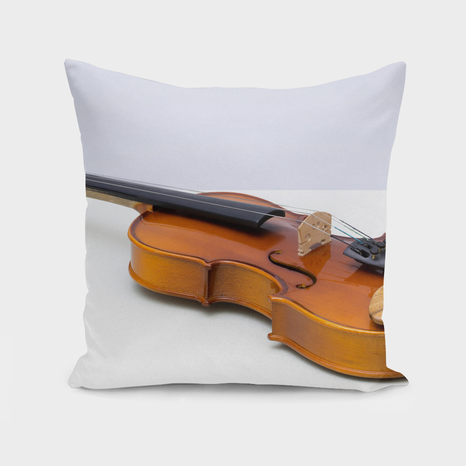 violin on a gray background