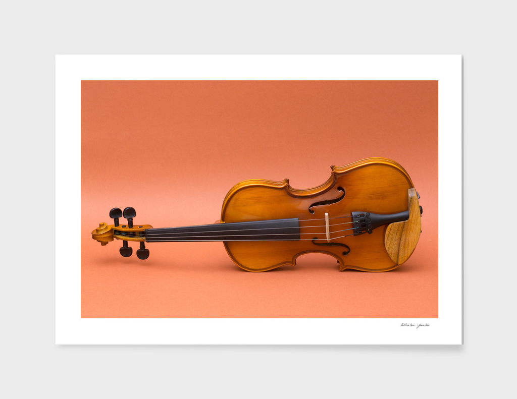 violin on a brown background