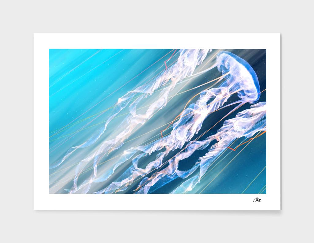 Jellyfish Soft Dance