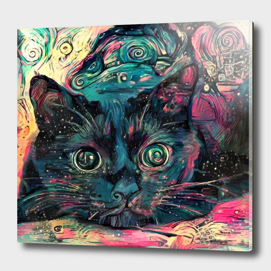 Vincent's Cat