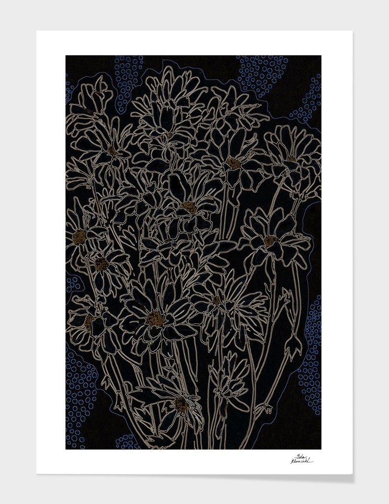Chrysanthemum, black version