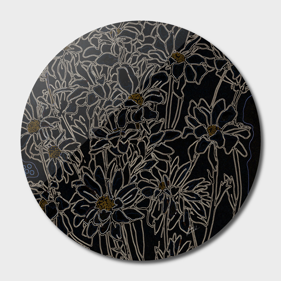 Chrysanthemum, black version