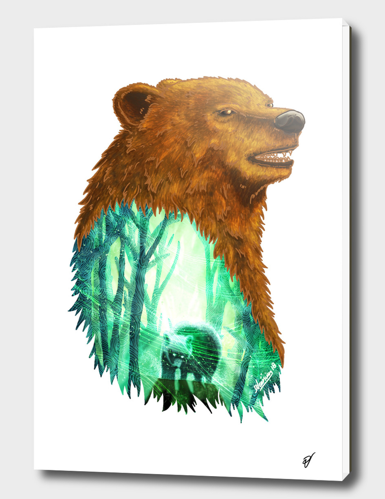 Bear's Forest