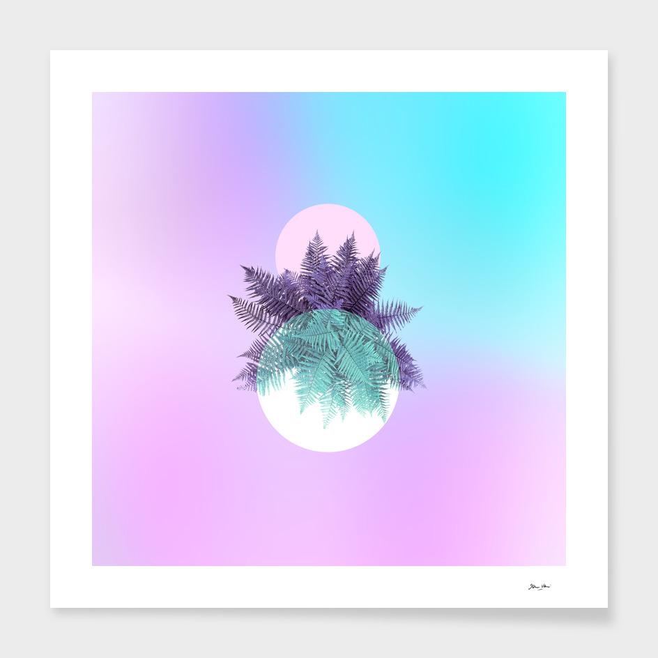 Moon Fern - Neon Candy