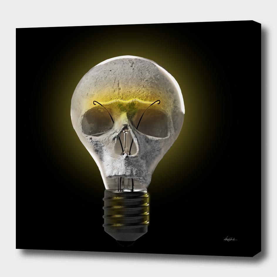 Skull Bulb