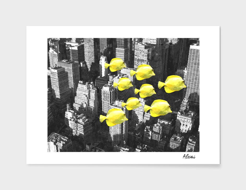 Fish in New York City