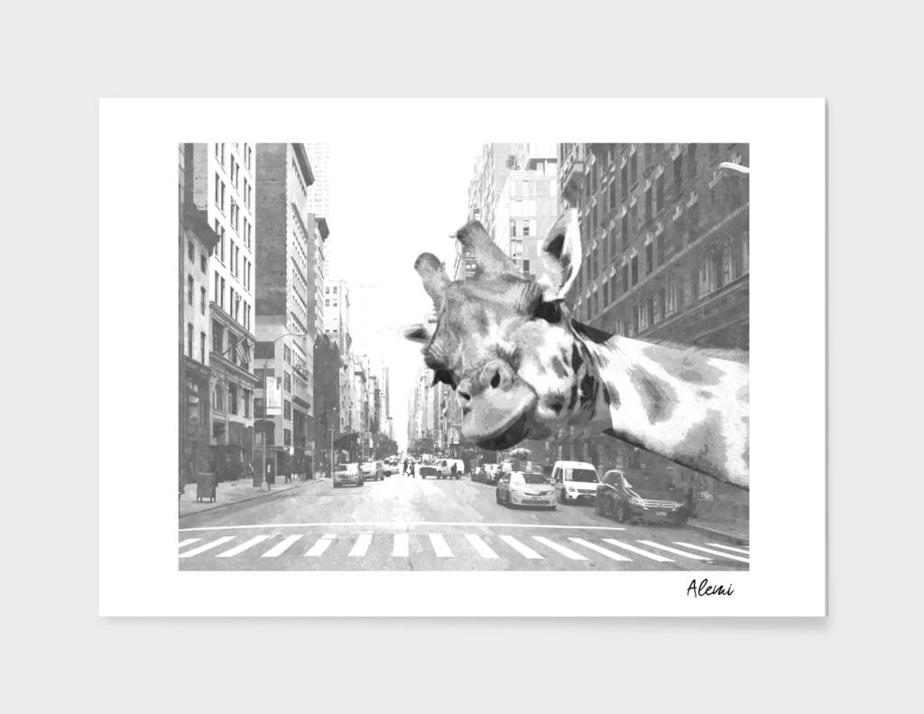 Black and White Selfie Giraffe in NYC
