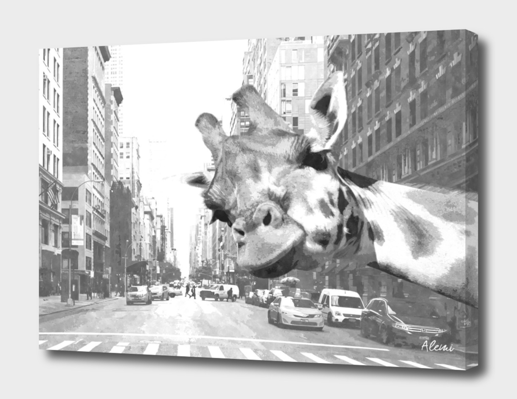 Black and White Selfie Giraffe in NYC