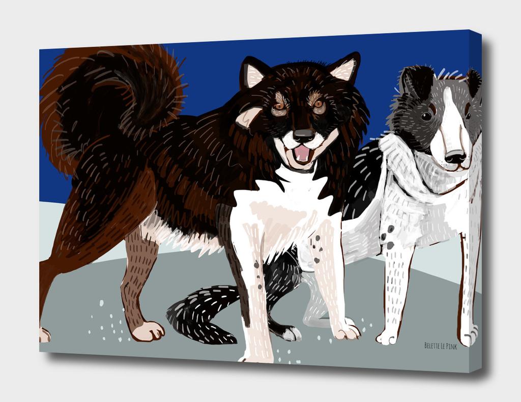 Year of the Dog: Karafuto Ken - Sakhalin husky