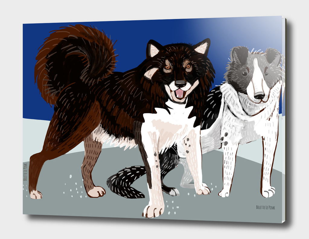 Year of the Dog: Karafuto Ken - Sakhalin husky