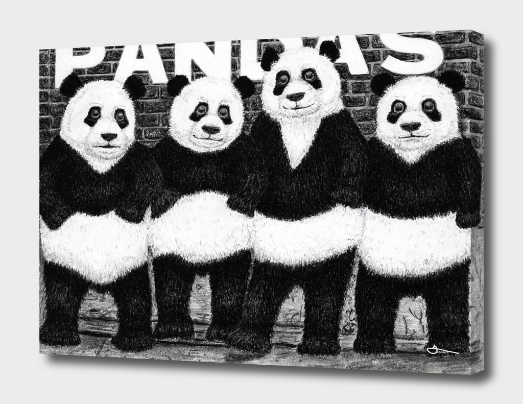 PANDAS (Ramones Parody)