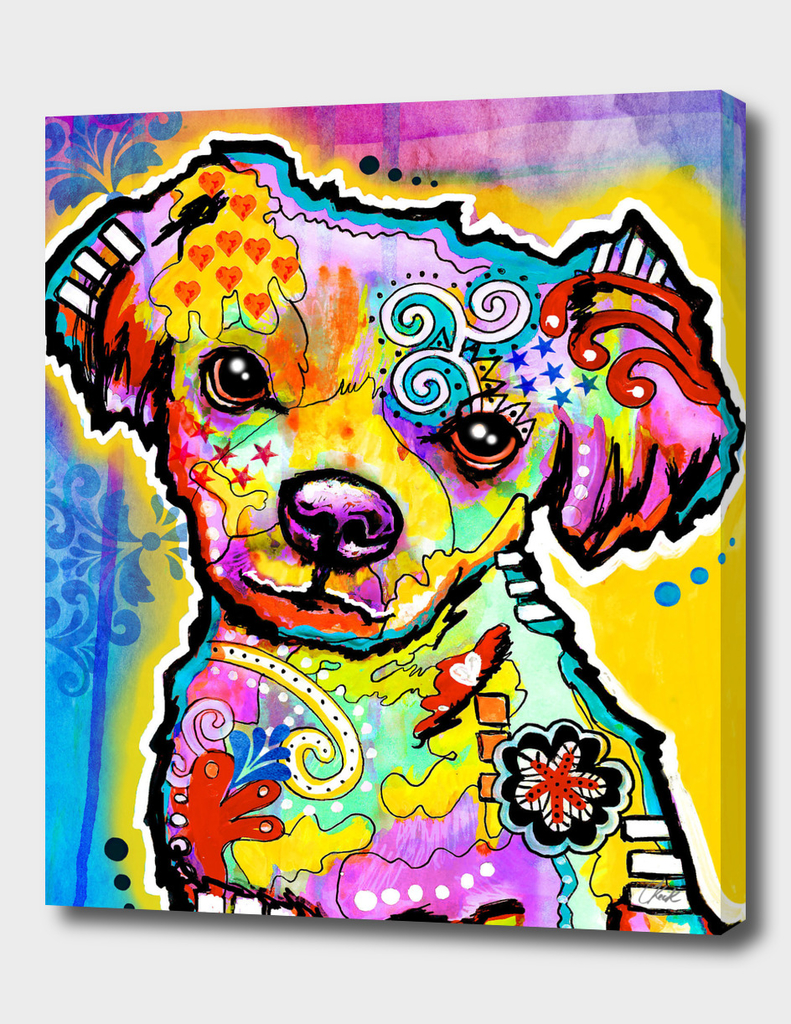 Belota Colorful Puppy Dog