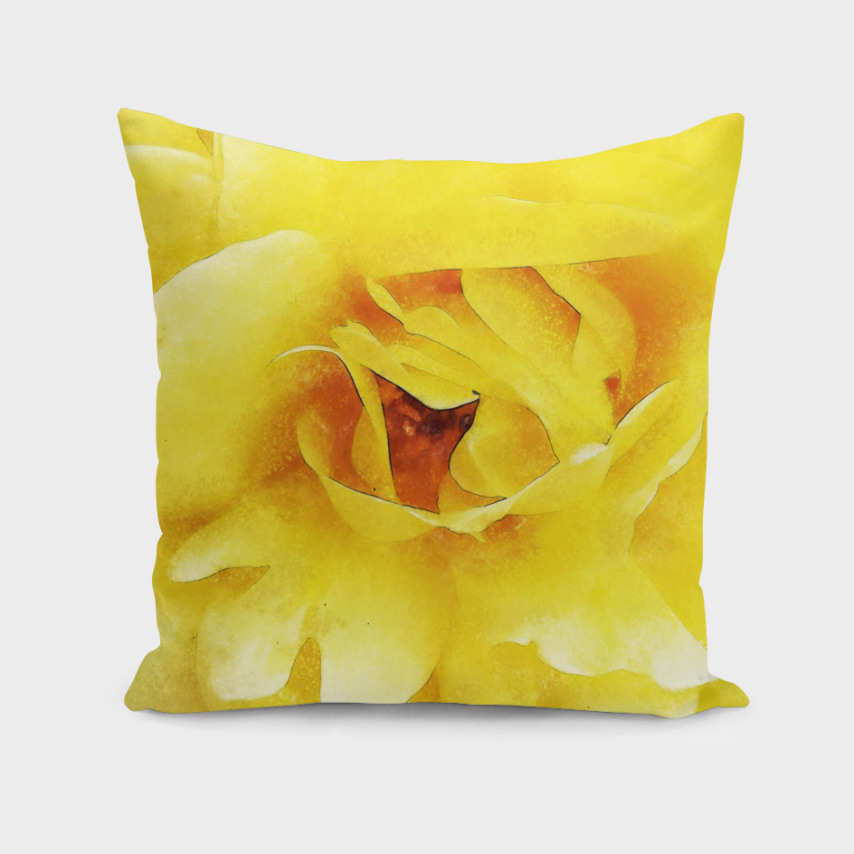Closeup Yellow Rose Fine Art