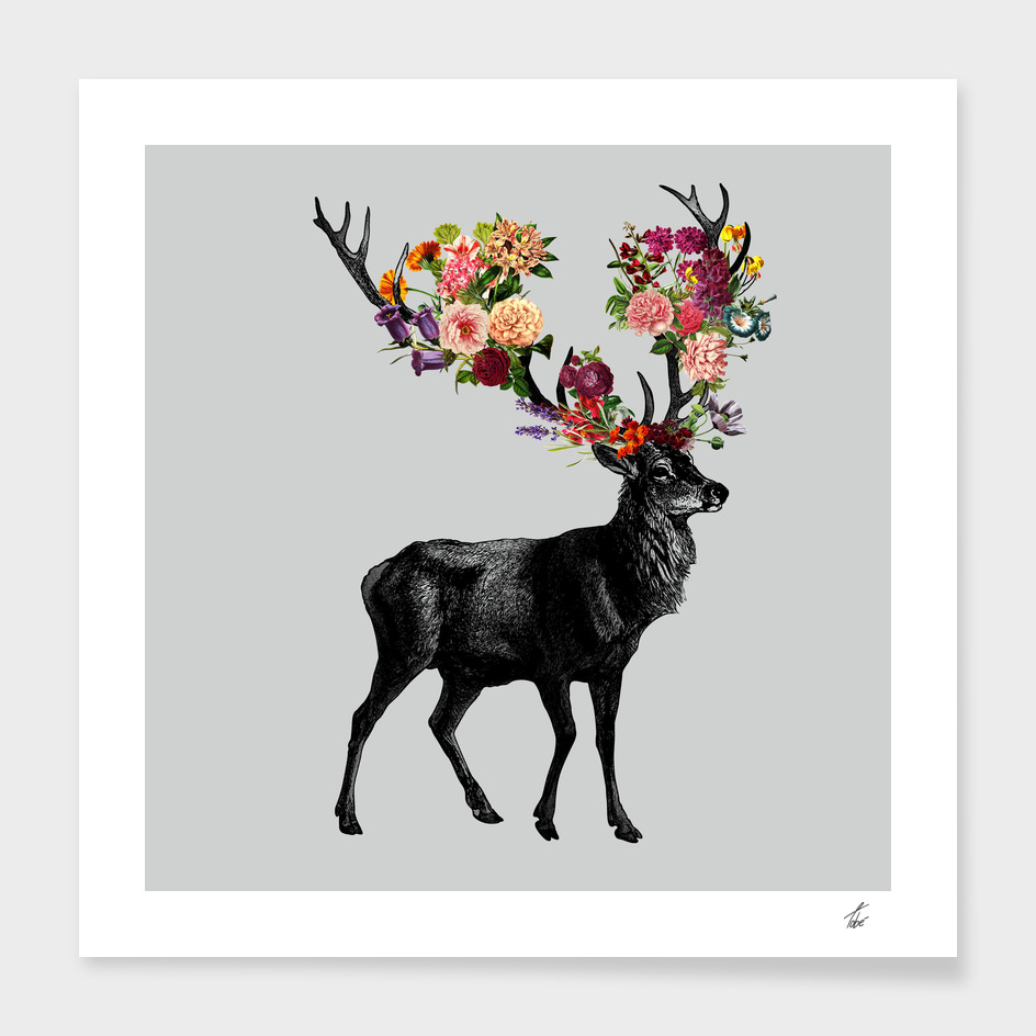 Spring Itself Deer Floral
